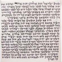 Мезуза 12*12 см (Аризаль Лекатхила Израиль)